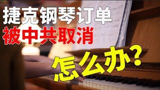 捷克钢琴遭中共报复,被撤订单,怎么办?真是柳暗花明又一村!【时事追踪】
