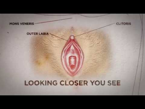 Sex-Web-Cam-Ansicht