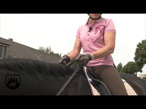 Loesdau Lessons: Basics mit Kati: Zügelhilfen zur Verständigung mit dem Pferd