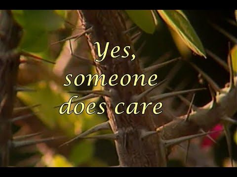 Does Anyone Care?
