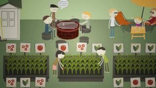 A közösségi kertekről