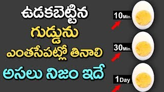 SHOCKING Facts That You NEVER Knew About BOILED EGGS!   Latest Updates   Health Tips   VTube Telugu
