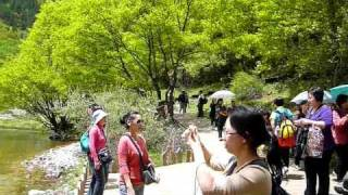 Video : China : Five Flower Lake (WuHuaHai) in JiuZhaiGou 九寨沟 Nature Reserve
