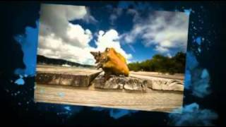 preview picture of video 'Sailing Antigua & Barbuda'