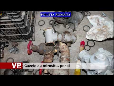 Gazele au mirosit… penal