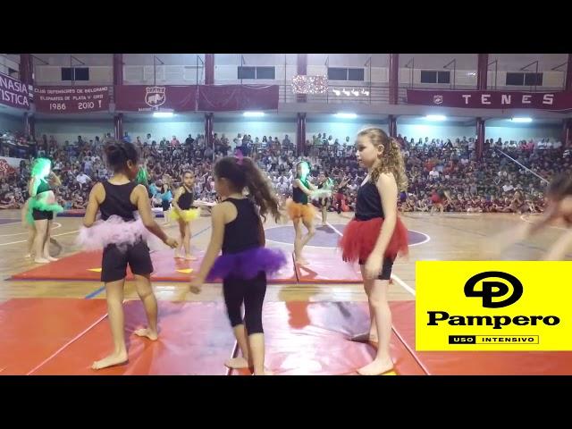Gimnasia artística en la 32° Fiesta del Deporte