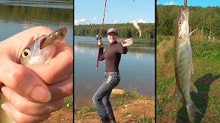 Рыбалка на лесное озеро сергиев посад