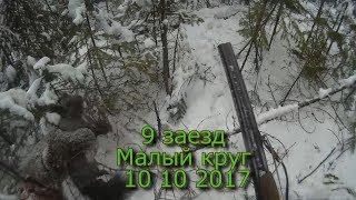 9 заезд  Малый круг  10 11 2017
