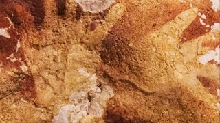 Worlds Oldest Cave Paintings From 40,000 Years Ago Discovered In Indonesia