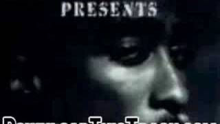 2pac - Panther Power Ft. Ray Luv - The Remixes