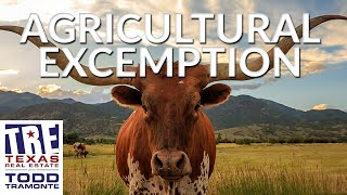 What Should I do if I Need an Agricultural Exemption? | Texas Real Estate Radio Excerpt