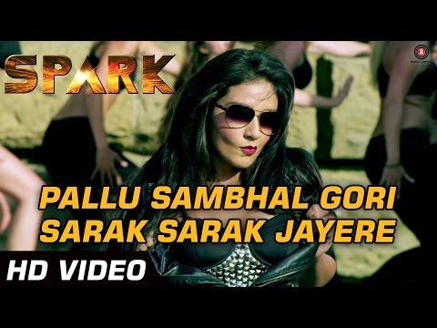 Pallu Sambhal