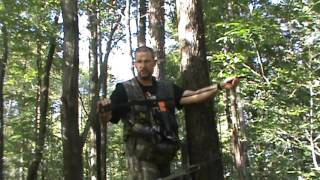 Treestand Wingman Review