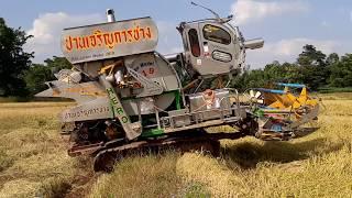 แรง เร็ว จัดจ้าน รถเกี่ยวตู้แอร์ VIP ปานเจริญ2019 ข้าวหนา เมืองบุรีรัมย์ combine harvesters EP.5829