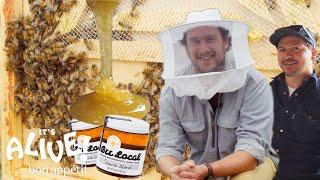 Brad Makes Honey | It's Alive | Bon Appétit - dooclip.me