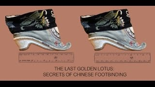 Picture of a movie: Last Golden Lotus- The Secret Of Chinese Foot Binding