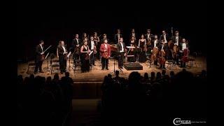 AS QUATRO ESTAÇÕES  - Antonio Vivaldi