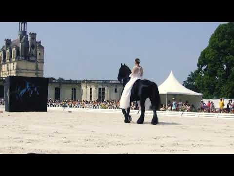 500 ans de Chambord - Cécile Philip - Liska Llorka - JoanB