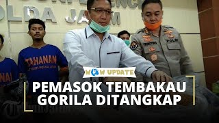 Polda Jatim Menangkap Pengedar Tembakau Gorila, Penjualan hingga ke Pulau Jawa dan Bali