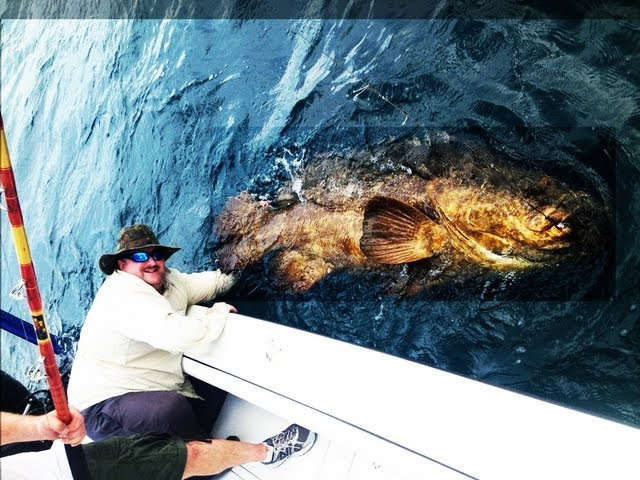 EPIC EXTREME FISHING - BIG MAN CATCHES BIG FISH - FISHING BIG FISH FLORIDA