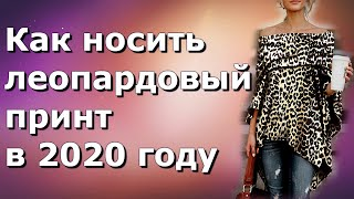Анималистичный принт 2020: как сочетать