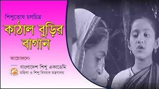 KATHAL BURIR BAGAN কাঠাল বুড়ির বাগান