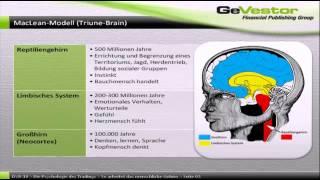 Aufteilung des menschlichen Gehirns