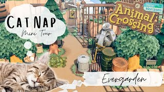 Cottagecore Dream Tour | Evergarden | Animal Crossing New Horizons | Cat Naps
