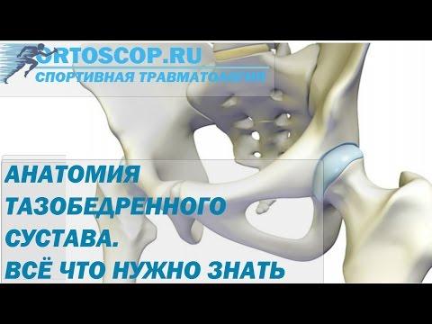 Болит в левой стороне спины снизу