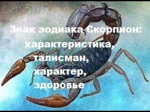 Знак зодиака Скорпион :  характеристика,талисман, характер, здоровье