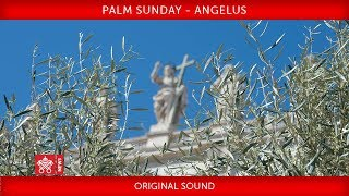 Pope Francis - Celebration of Palm Sunday - Angelus prayer 2019-04-14