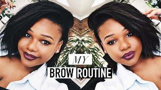 My Eyebrow Routine | South African Beauty Blogger