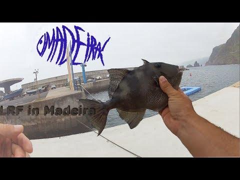Kystfiskeri på Madeira