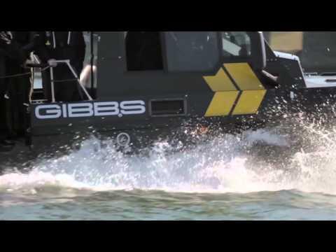 GIBBS AMPHIBIAN PHIBIAN Amphibious Vehicle