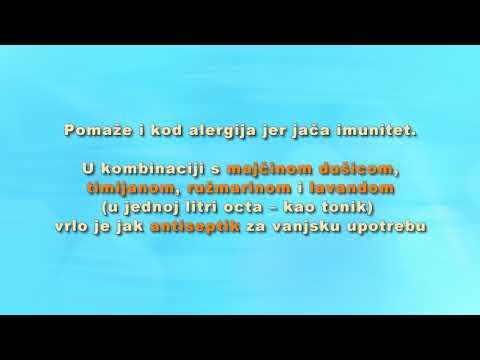 Kako da se castoreum tinktura od prostatitisa