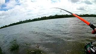 Рыбалка на оке в августе
