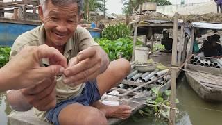 Câu Cá Giải Trí Cùng Các Cao Thủ Trúm Lươn