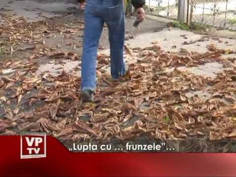 """""""Lupta cu … frunzele""""…"""