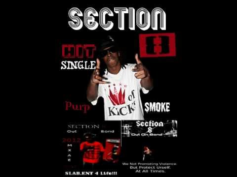 Section 8.WMV