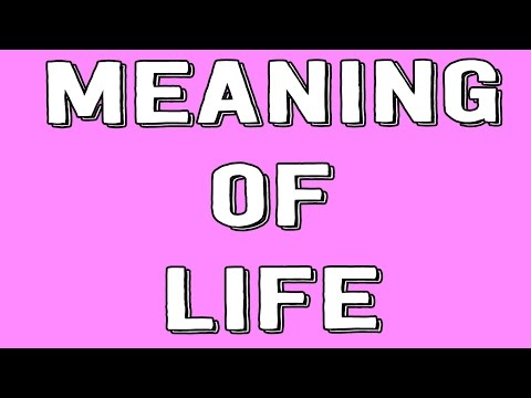 Meaning of Life!
