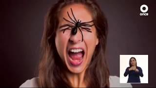 Diálogos en confianza (Saber vivir) - Miedos y fobias