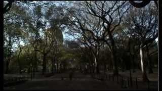 Deff Lepard - Torn To Shreds (Vanilla Sky)