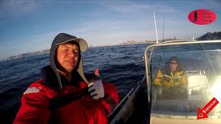 Морская рыбалка в северной норвегии на палтуса