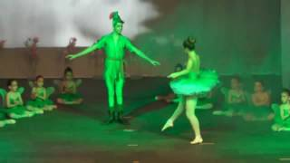 Beautiful costume for this show !!!!!!!!!   TinkerBell and  Peter Pan
