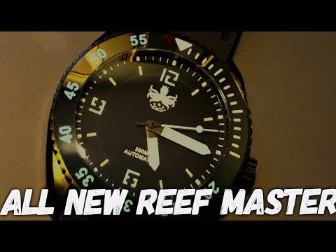 Phoibos REEF MASTER 300M Automatic Dive Watch Review - The BEST WATCH Under $250!?