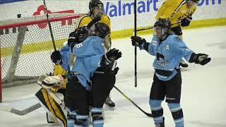 NWHL Highlights Boston at Buffalo 03.09.19