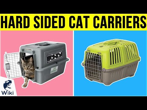 8 Best Hard Sided Cat Carriers 2019