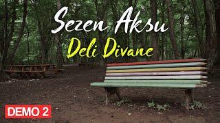 Sezen Aksu - Deli Divane (Lyrics | Şarkı Sözleri)