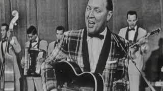 Bill Haley & His Comets \
