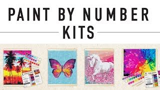 Horizon Group USA Paint by Number Kits